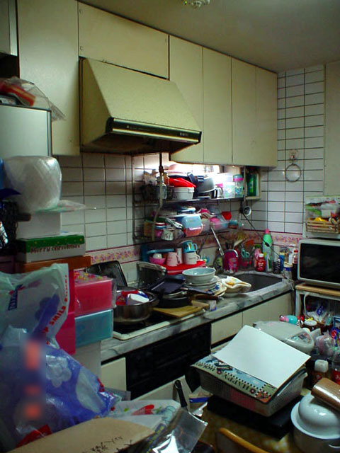 物が溢れてしまうキッチンを収納充実のシステムキッチンにリフォーム